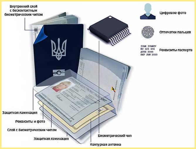Украинский биометрический загранпаспорт структура