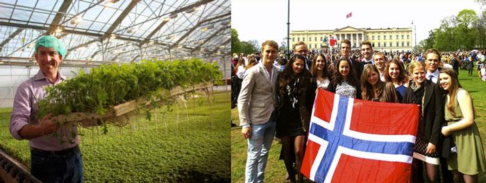 Studenty v Norvegii i stazhirovka