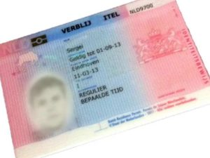 - миграция всей семьи – бракосочетание с французским подданным, единение семейства;